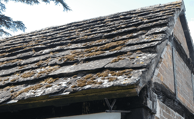 Colchester Building Surveys slate roof inspection
